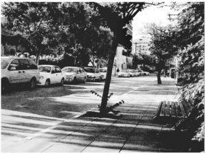 ◎莱霍夫-阿姆拉米大街