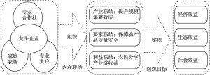图1 农业产业联合体发展路径