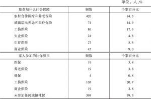 表11-29 农民工及其家人参加的社会保障项目统计