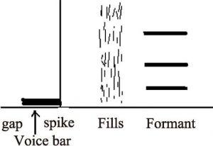 图3.8 辅音声学特征基本模式