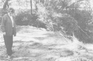 图1 贝丽尔·玛格丽丝指着原来位于沙井博格溪(Shaking Bog Creek)上的水潭的位置