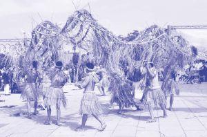 图1-2 壮族稻草衣