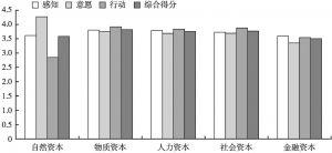 图1 农户生计资本响应得分