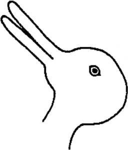 图1 鸭兔图
