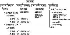 图1 知识点结构