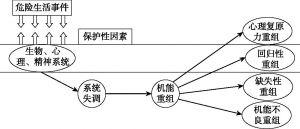 图4-2 Richardson的过程模型