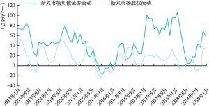 图3 新兴经济体证券组合流动