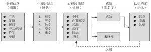图2-2 消费者感知过程模型