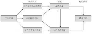 图2-7 认知反应模型
