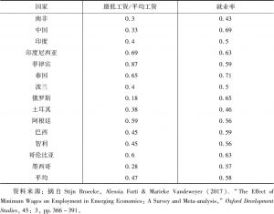 表1 新兴经济体最低工资就业率对照