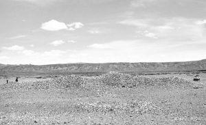 图4-22 泽蚌墓地M2