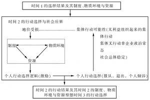 图9-1 情境理性的行动者分析架构