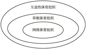 图1 网络体育组织示意
