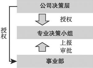 图3 专业小组/委员会授权机制示意图