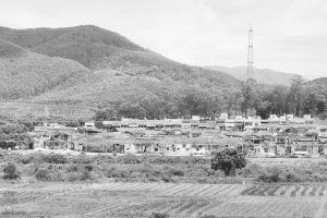 图4-6 从星光村卫生所楼顶拍摄凤山楼(从南向北拍摄)