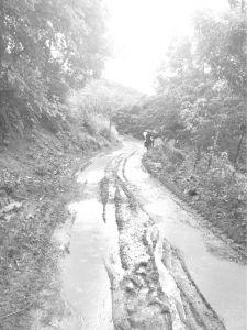 图2 村寨泥泞的小路