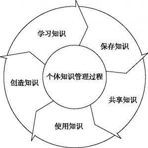图2-2 个人知识管理过程