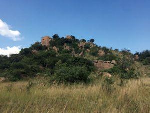 野外的桑人岩画山