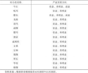 表4-5 牛红村产业发展规划一览