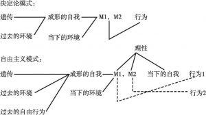 图2 决定论的和自由主义的行为模式