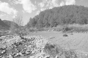 图1-1 河源村村委会门前的河源大沟
