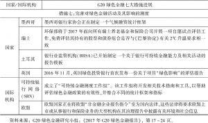 表6-1 G20绿色金融七大措施进展-续表4