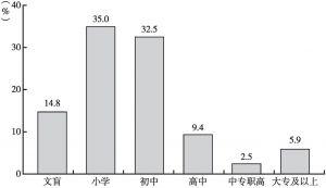 图2-10 2016年龙岗村村民文化水平情况