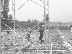 图2-4 受过搭建技能培训的村民正在修建草莓大棚