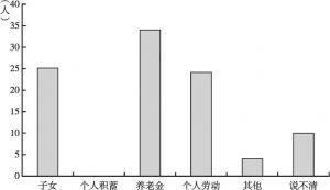 图4-11 王家村调查的60户将来养老的主要依靠
