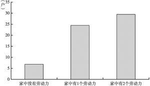 图4-13 王家村调查的60户家中劳动力人数