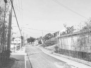 图3-2 双台村修缮后的道路