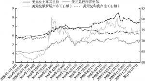 图14 部分新兴经济体的货币汇率