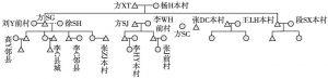 图2 方家的系谱图