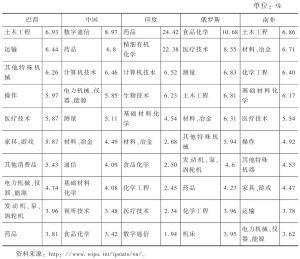 表6 1998~2012年金砖国家专利申请科技领域分布