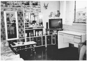 图3-20 老阿家的客厅(作者摄)