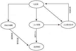 图3-1 生育率对经济增长的影响路径