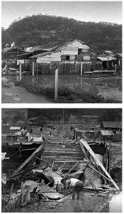 图4-5 台风过后的新口岸(1964年)