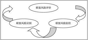 图3-1 产业技术创新战略联盟风险管理过程框架