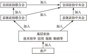图5-1 日本农协三级金字塔式组织体系