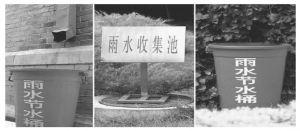 图6 北京市政府机关大院内的节水集雨技术案例