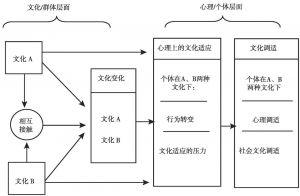 图1 大众文化适应框架中文化层面与心理层面的流动情况<superscript>*</superscript>