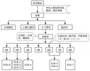 图1 从杜仲雄花中提取分离化合物的工艺流程图