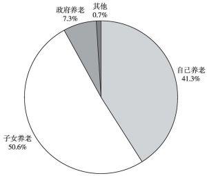 图2-1 西部民族地区村民的养老方式