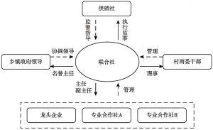 图1 联合社五位一体管理体制