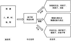 图6 面子的基本体系