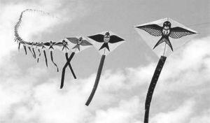 图5-16 风筝