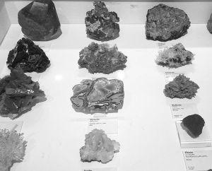 图1 石头