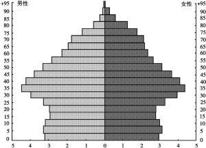 图1-1 卢森堡人口结构金字塔(2004年1月1日)