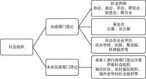 图1 社会组织分类