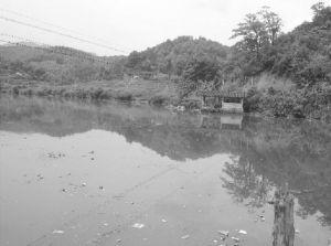 左岸:牛头窝自然村